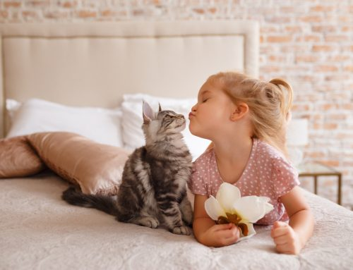 Top 10 Tips to Keep Kids and Pets Safe