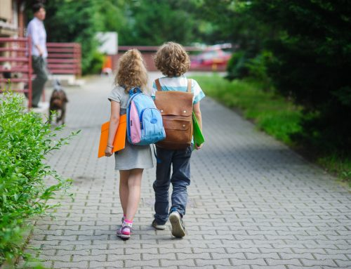 All By Myself—Pet Success for a New School Year